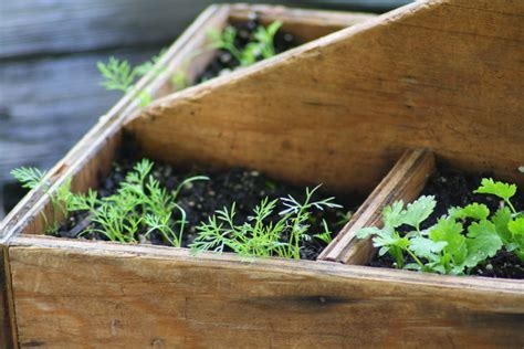Railroad Tie Planter Box by Got Junk Don T Throw It Out Plant It 187 Dirt And Martinis