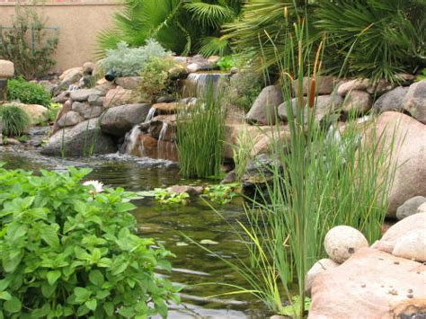 free backyard landscaping ideas free backyard landscaping ideas