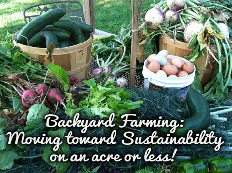 backyard farming on an acre backyard farming on an acre review living off the land