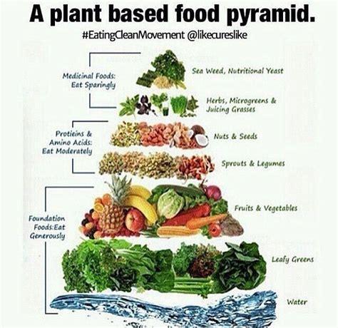 alternative vegan healthy plant based recipes that the books 538 best vegan plant based recipes images on