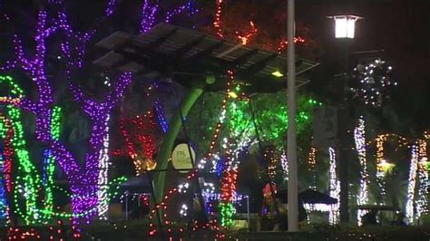 zoo lights miami zoo lights miami lights up the for the holidays