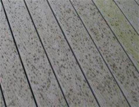 composite deck maintenance restoration steps