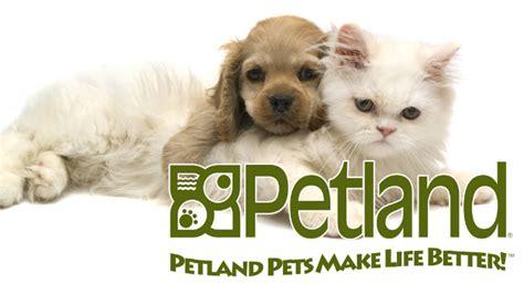 petland puppy prices petland novi mi twelve oaks mall prlog