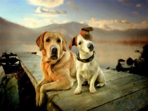 imagenes artisticas de animales arte y dos perros