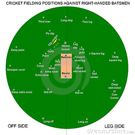 The Time Fielding cricket fielding royalty free stock photo