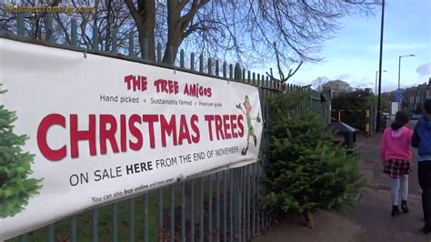 real christmas trees for sale endcliffe park sheffield