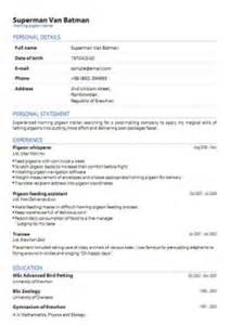 create cv resume pdfcv