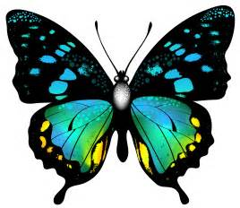 blue colorful butterfly png clip art image gallery
