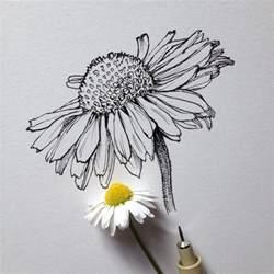 best 25 flower drawings ideas on pinterest geometric