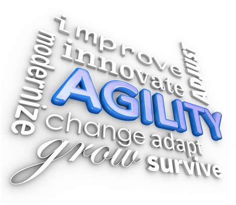 how to agility business agility how to approach your operations in a responsive manner