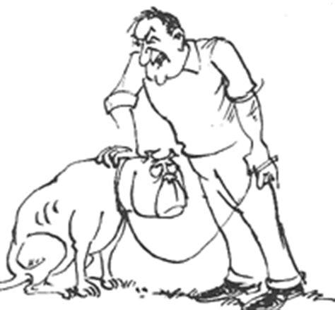 dog deliberately peeing in house dog behaviour training pet psychologist