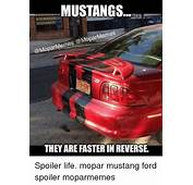 MUSTANGS Memes THEY ARE FASTERIN REVERSEH Spoiler