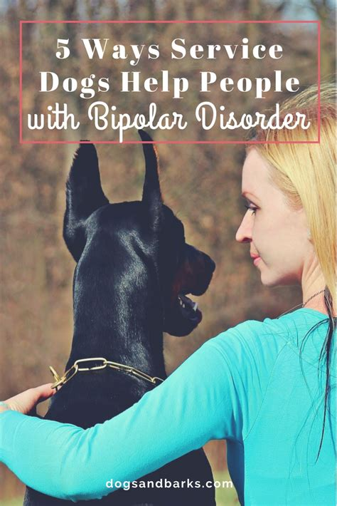bipolar service 5 ways service dogs help with bipolar disorder dogs and bark