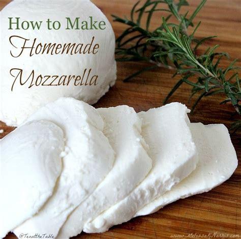 Handmade Mozzarella - mozzarella cheese recipe how to