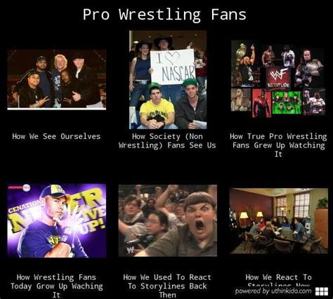 Wwe Wrestling Memes - 17 best images about wrestling on pinterest combat sport