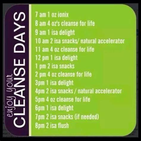 Easy 2 Day Detox Cleanse by Hour By Hour Cleanse Day Schedule If You Want To Find Out