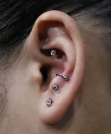 25 best ideas about anti tragus piercing on