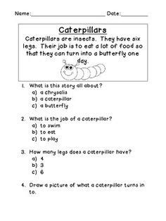 Story Comprehension: What's the Main Idea? | Main idea
