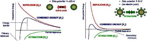 protein zeta potential the influence of particle size zeta potential and