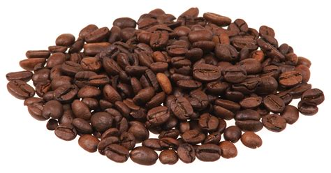 Coffee Bean file coffee beans jpg wikimedia commons