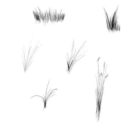 grass pattern brush photoshop massive collection of grass brushes for photoshop designdune