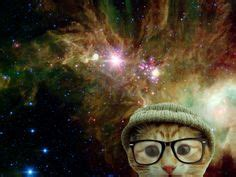 sarcomeric pattern formation by actin cluster coalescence space cat pawty on pinterest space cat cats and spaces