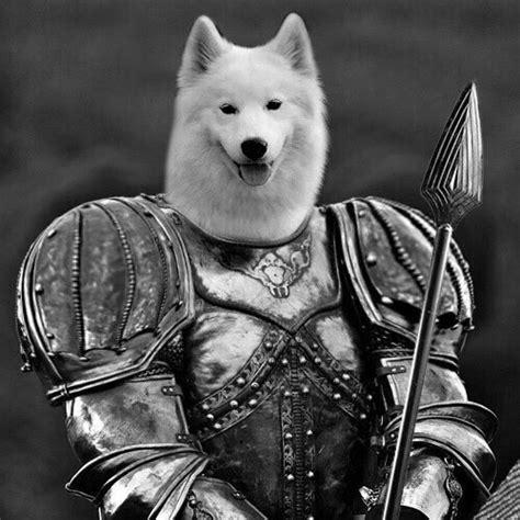 undertale lesser lesser appears undertale irl dogs