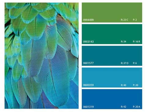 blue and green combination november 2013 a color palettes pinterest