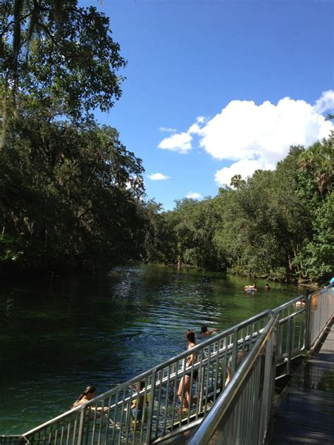 park orange city fl 47 best images about blue springs state park on