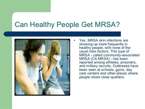 can dogs get mrsa mrsa ppt
