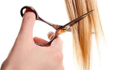 como cortar cabello c 243 mo cortar puntas del cabello buena salud