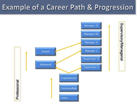 career path template career framework template search career