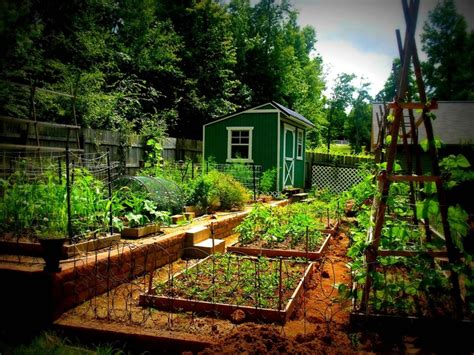 Terrace Vegetable Garden 17 Best Images About Terraced Vegetable Gardens On