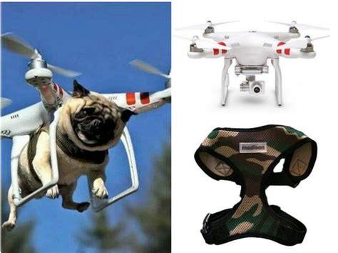 camo pug weaponized pug get this look dji phantom aerial uav drone quadcopter authentic