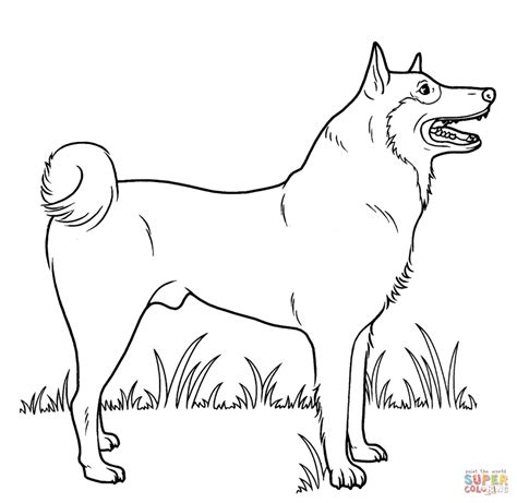 free coloring pages with dogs coloring pages dogs coloring pages free coloring pages