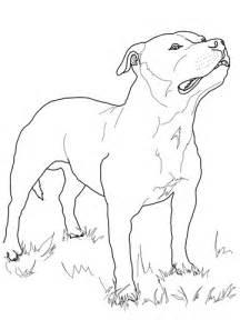 Boston Terrier Coloring Page Image Boston Terrier Coloring Boston Terrier Coloring Pages