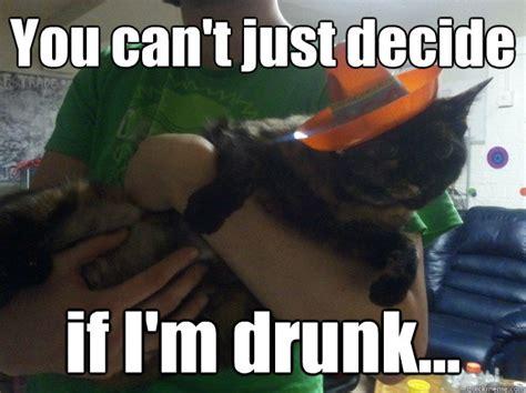 Drunk Cat Meme - drunk cat fiesta memes quickmeme