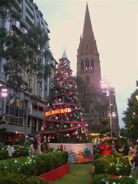 simple simon says melbourne christmas trees 2012