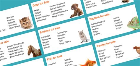 websites to sell puppies selling dogs on craigslist gumtree classified ads websites