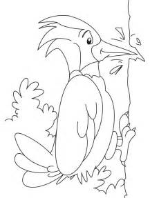 great spotted woodpecker coloring pages download free