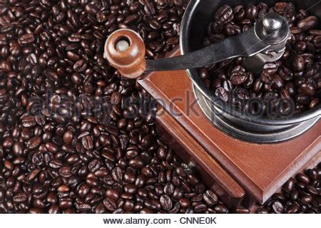 Black Coffee Robusta Roasted coffee grinder and coffee beans stock photo royalty free image 92085024 alamy