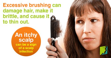 Can Using A Hair Dryer Cause Dandruff hair itchy scalp causes diydry co