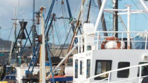 cameras on fishing boats nz plan to install cameras on commercial fishing boats to