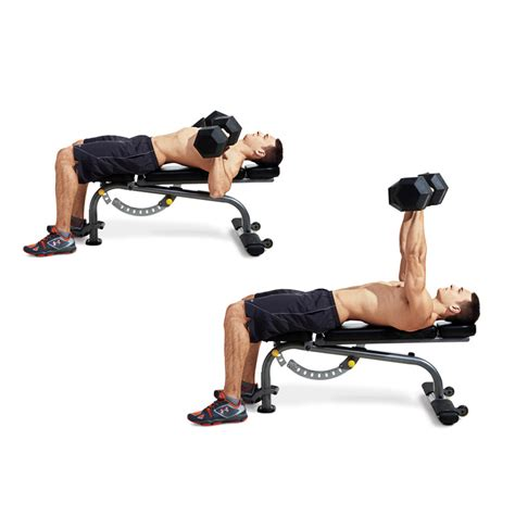 bench row dumbbell dumbbell row on flat bench benches
