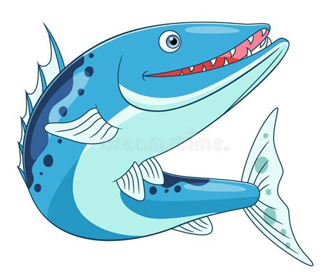 barracuda clipart barracuda stock vector illustration of vector