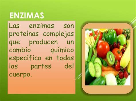 proteinas y enzimas lipidos enzimas y proteinas