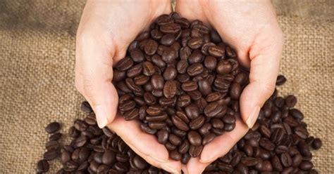 menyangrai kopi menggunakan mesin pemanggang kopi mesin