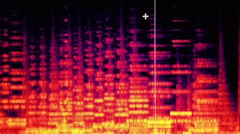 Lu Stop Rxk Spectrum Merah infrared forest a sonic painting with yamaha dx7 iifd synthesizer and audio spectrograph