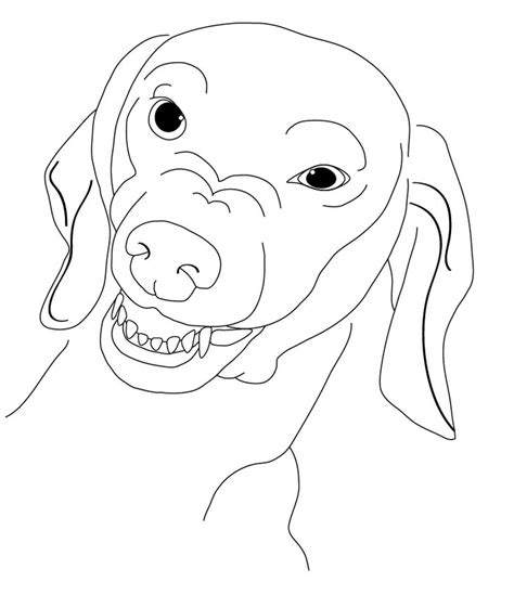 dachshund puppies coloring pages 16 best dachshund coloring pages images on pinterest