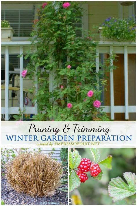 winter garden prep 1000 images about empress of dirt on